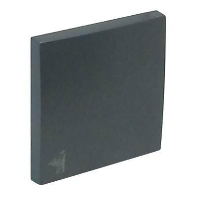 Клавиша для выключателя Efapel Logus90, 45х45 мм (ВхШ), кол-во клавиш: 1, цвет: тёмно-серый, (90606 TIS)